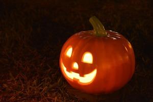 pumpkin-1544602_640