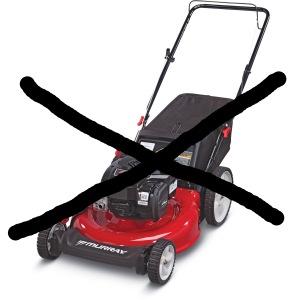 no-mow